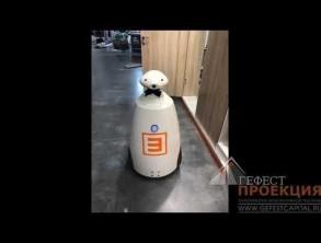 Компания «Гефест Проекция РТ» предоставила интерактивное и проекционное Оборудование