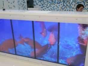 Интерактивный аквариум в стойке рецепшн в медицинской клинике в г. Москва